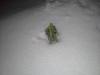 148 Leon in KY snow