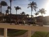 Aruba horde